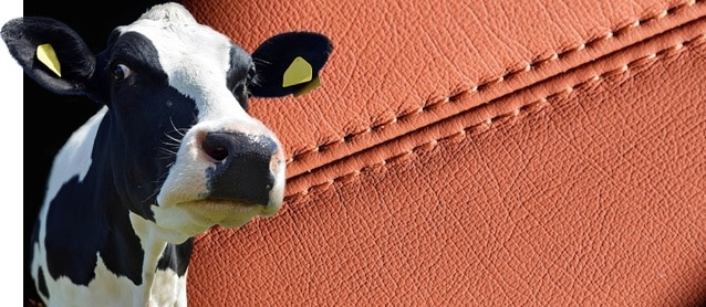 What is Cowhide Leather?